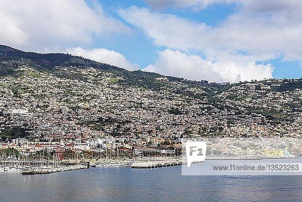 Hafen  Stadtansicht  Funchal  Madeira  Portugal  Europa