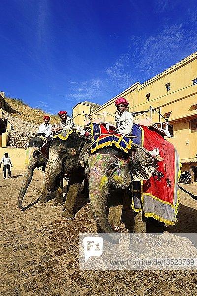 Geschmückte und bemalte Elefanten im Amber Fort  Jaipur  Rajasthan  Indien  Asien