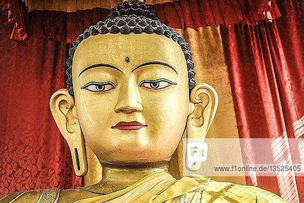 Kopf einer Buddhastatue  Swayambhu Tempelanlage  Kathmandu  Himalaya Region  Nepal  Asien
