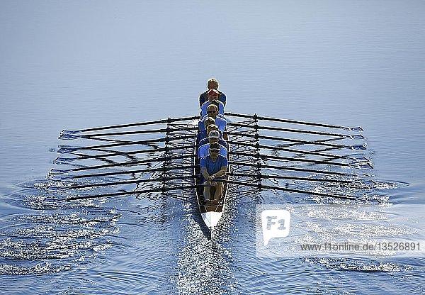 Ruderer rudern im Ruderboot  Achter  Main Donau Kanal  bei Nürnberg-Katzwang  Mittelfranken  Franken  Bayern  Deutschland  Europa