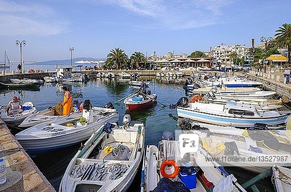 Fischerhafen am Morgen  Saranda  Sarandë  Qark Vlora  Ionisches Meer  Albanien  Europa