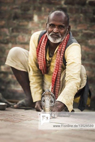 Schlangenbeschwörer  Lumbini  Nepal  Asien Schlangenbeschwörer, Lumbini, Nepal, Asien