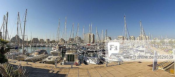 Marina of the seaside resort of La Grande Motte  Herault department  Occitanie  France  Europe