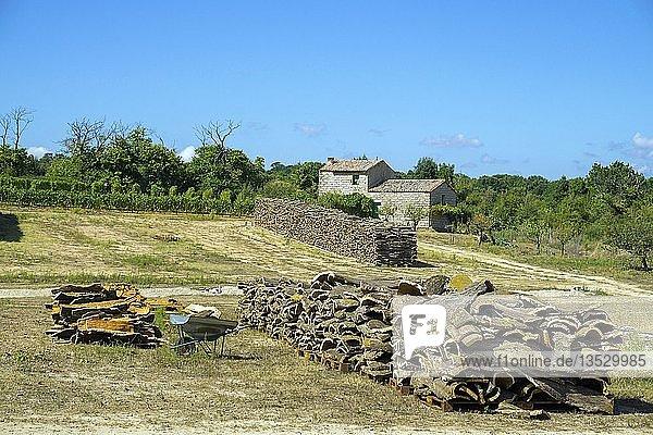 Gestapelte Rinden von Korkeichen (Quercus suber)  Korkproduktion  Region Gallura  Provinz Sassari  Sardinien  Italien  Europa