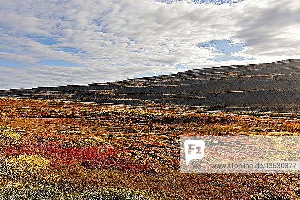 Colourful Autumn landscape  Westfjords  Iceland  Europe