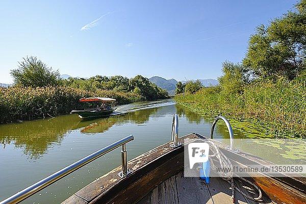 Ausflugsboote auf Skutarisee  Nationalpark Skadarsee  Kanal nahe Virpazar  Provinz Bar  Montenegro  Europa