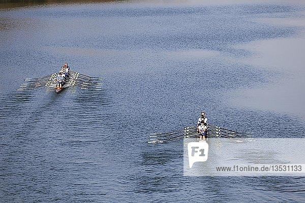 Ruderer rudern im Ruderboot  links Achter und Vierer ohne Steuermann  Main Donau Kanal  bei Nürnberg-Katzwang  Mittelfranken  Franken  Bayern  Deutschland  Europa