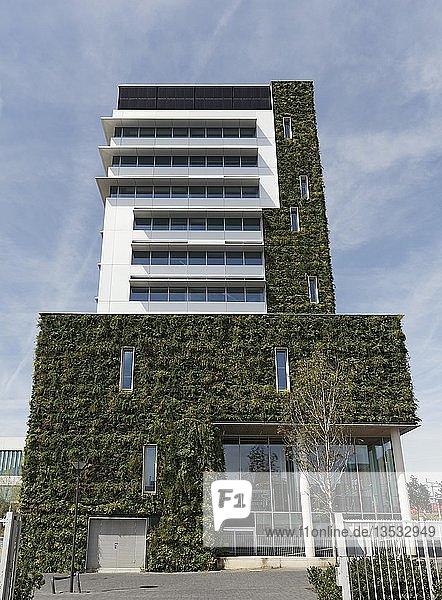 Öffentliches Gebäude mit bepflanzter Fassade  ökologischer Bau  neues Rathaus  Venlo  Provinz Limburg  Niederlande  Europa