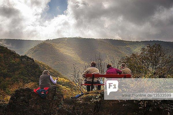 Vier Personen rasten auf einer Bank auf dem Rotweinwanderweg  Altenahr  Rheinland-Pfalz  Deutschland  Europa