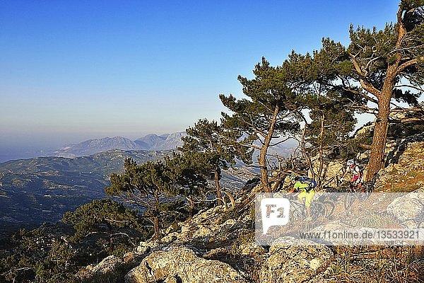 Zwei Mountainbiker radeln in felsigem Gelände durch Kiefernwald  bei Stavros  Kreta  Griechenland  Europa
