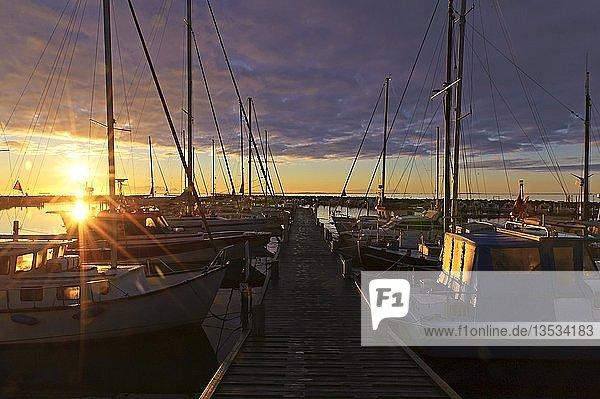 Sonnenaufgang über den Segelyachten am Landungssteg  Spodsbjerg  Langeland  Dänemark  Europa