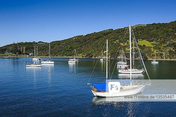 Segelboote in der Matiata-Bucht  Waiheke Island  Nordinsel  Neuseeland  Ozeanien
