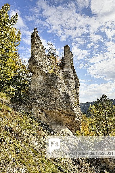 Ausgewaschene Felsnadel aus Jurakalstein mit den Bebauungsresten der im 14. Jahrhundert entstandenen Burg Neugutenstein  auch gebrochen Gutenstein  im herbstlichen Donautal bei Inzigkofen  Landkreis Sigmaringen  Baden-Württemberg  Deutschland  Europa