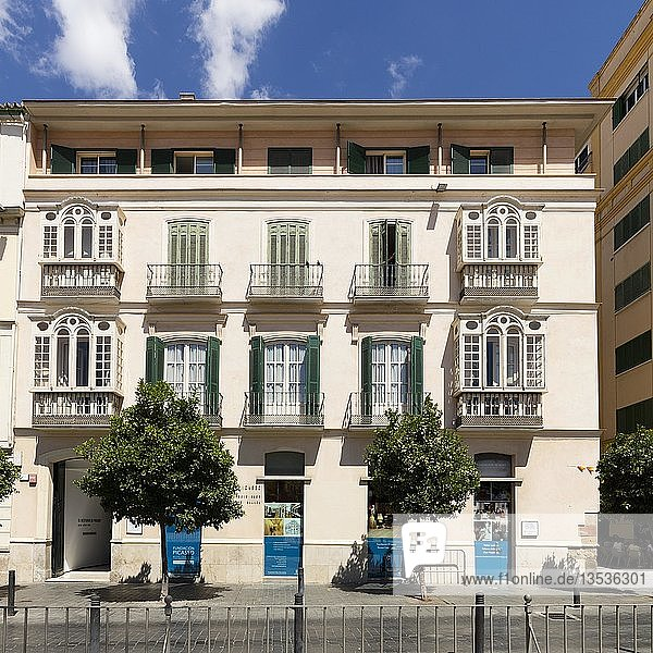 Picasso Museum  Málaga  Costa del Sol  Andalusien  Spanien  Europa