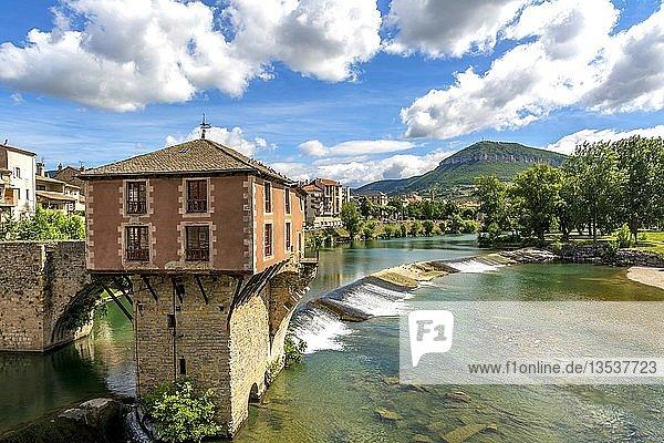 Alte Brücke und Mühle am Fluss Tarn  Millau  Aveyron  Okzitanien  Frankreich  Europa