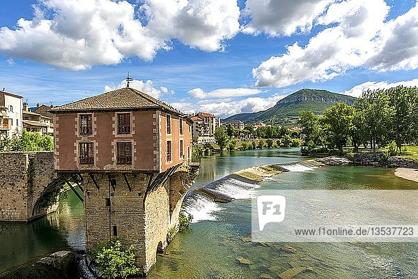Old bridge and mill on river Tarn  Millau  Aveyron department  Occitanie  France  Europe