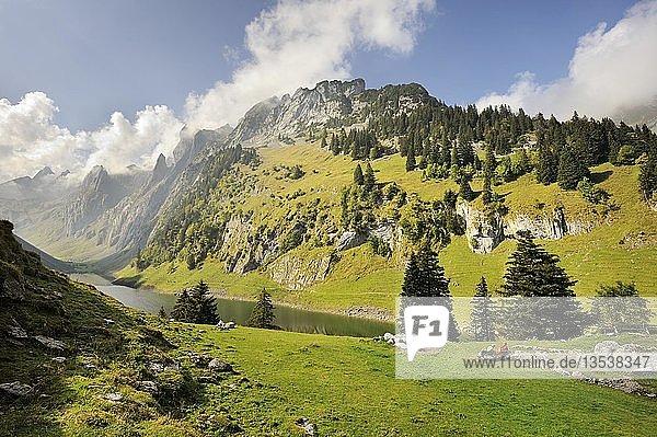 Blick hinab zum Fälensee  1446 m  mit dem Widderalpstock  2066 m  Kanton Appenzell Innerrhoden  Schweiz  Europa