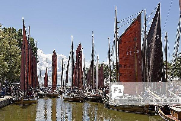 Hafen mit Zeesbooten  während Zeesbootregatta  Wustrow  Fischland  Mecklenburg-Vorpommern  Deutschland  Europa