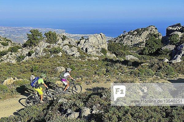 Zwei Mountainbiker fahren durch Macchia  bei Stavros  Selakano  hinten Ort Lerapetra  Kreta  Griechenland  Europa