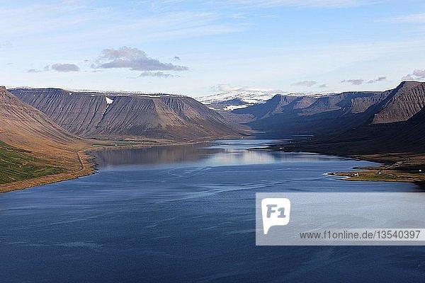 Arnarfjörd landscape  Westfjörds  North Atlantic  Iceland  Europe