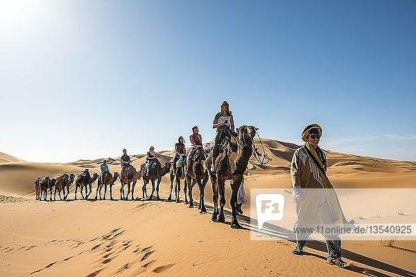 Caravan with dromedaries (Camelus dromedarius)  sand dunes in the desert  Erg Chebbi  Merzouga  Sahara  Morocco  Africa