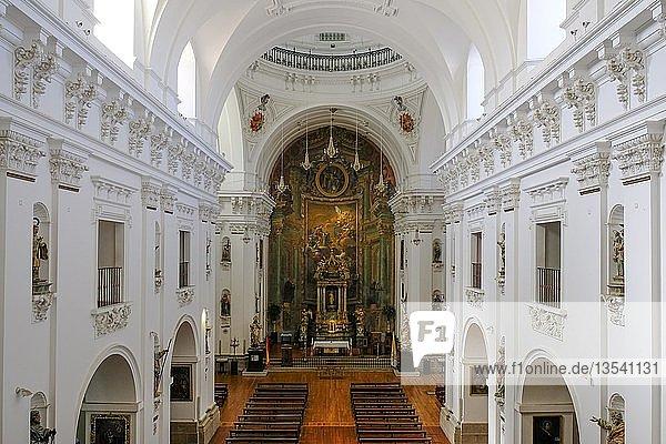 Innenansicht der Kirche San Ildefonso  Toledo  Kastilien-La Mancha  Spanien  Europa