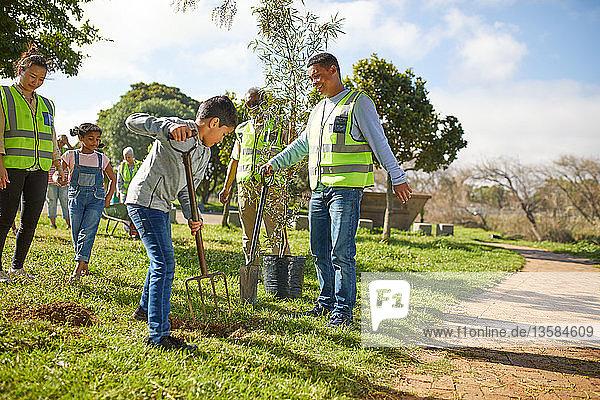 Multi-generation family volunteers planting trees in sunny park