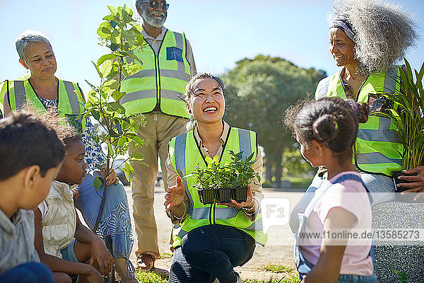 Happy volunteers planting trees and plants in sunny park