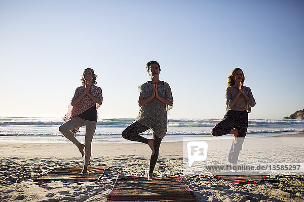 Serene women practicing yoga tree pose on sunny beach during yoga retreat