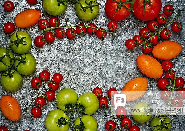 Frische bunte Tomaten