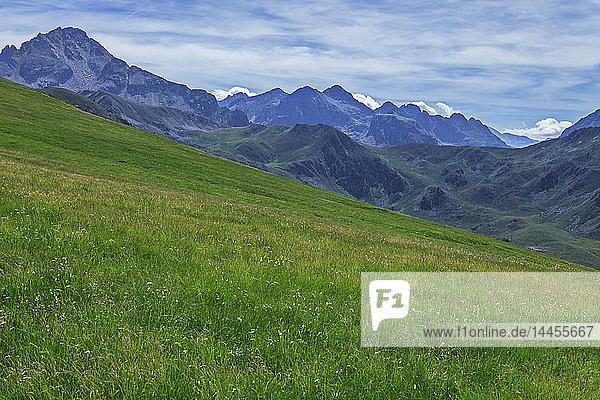France  Ariege  Pyrenees  mountain pastures near peak Ruhle