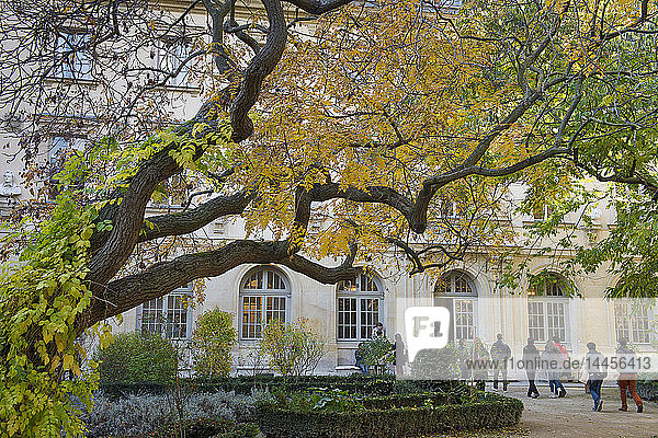 'France. Paris 5th district. Rue d'Ulm.Ecole Normale superieure (Superior teachers' training college). The courtyard of the school said '' The Ernest's courtyard '''