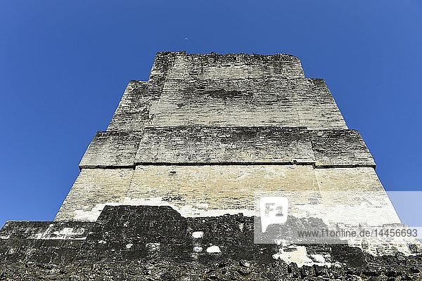 Tikal ruins  El Peten  Guatemala  Central America.