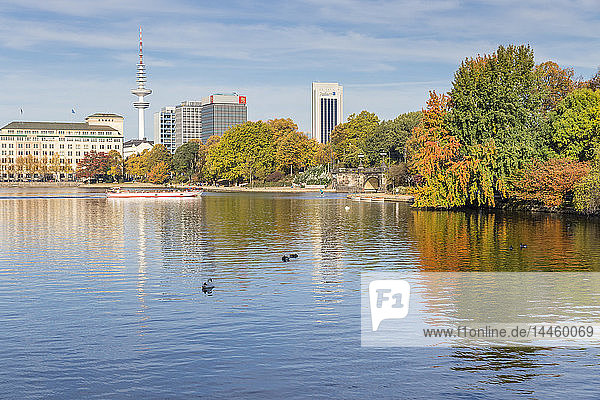 The Inner Alster (Binnenalster) with view to the Fernsehturm (Television tower) during autumn  Hamburg  Germany