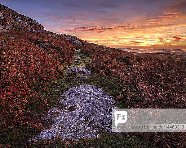 Twilight on the slopes below Saddle Tor with mist in the Teign Valley  Dartmoor National Park  Bovey Tracey  Devon  England  United Kingdom