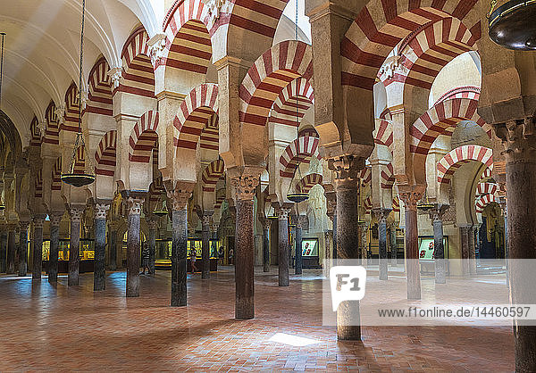 Decorated archways and columns in Moorish style  Mezquita-Catedral (Great Mosque of Cordoba)  Cordoba  UNESCO World Heritage Site  Andalusia  Spain