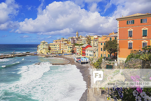 The picturesque village of Bogliasco,  Bogliasco,  Liguria,  Italy