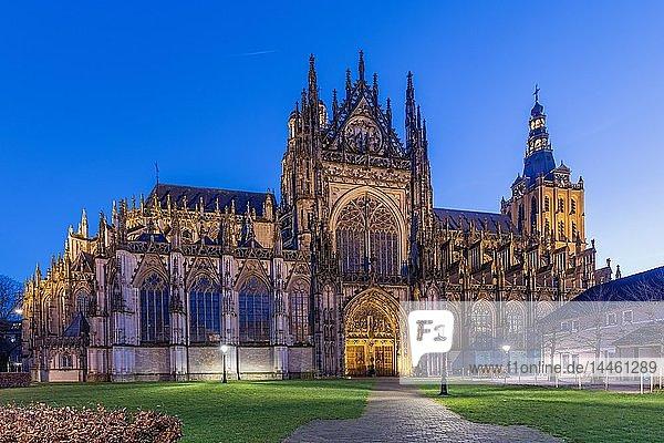 St. John Cathedral  Den Bosch  The Netherlands