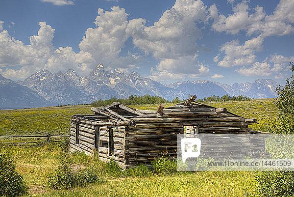 Shane Cabin  Homestead  near Kelly  Grand Teton National Park  Wyoming  United States of America  North America