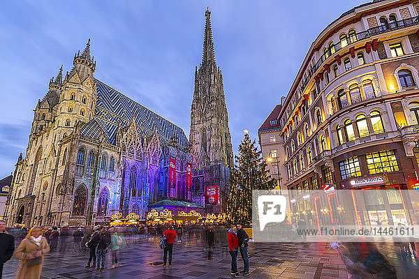 View of St. Stephen's Cathedral  shops and Christmas tree on Stephanplatz at dusk  Vienna  Austria