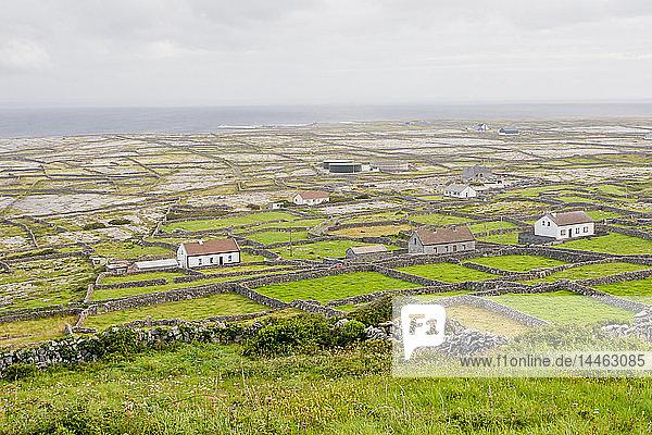 Bleak flat landscape of stone-walled farms  Inishmaan  Aran Islands  County Galway  Connacht  Republic of Ireland