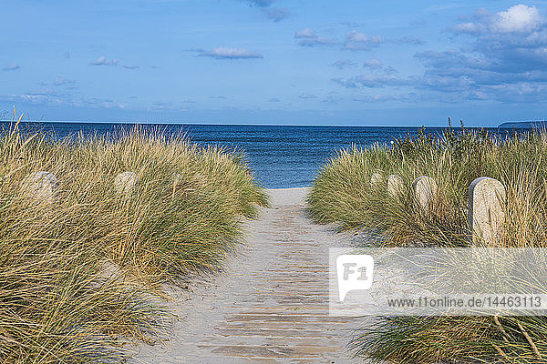 Breege beach  Rugen  Mecklenburg-Vorpommern  Germany