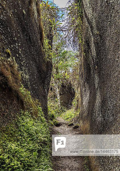 Rock Labyrinth  Asilo de la Paz  Highlands of Floreana (Charles) Island  Galapagos  UNESCO World Heritage Site  Ecuador