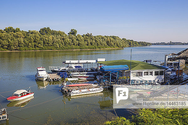 Floating restaurant and bars on the Danube River  Belgrade  Serbia