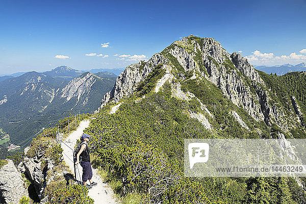 Hiker on Gratweg Trail from Heimgarten to Herzogstand Mountain  Upper Bavaria  Bavaria  Germany  Europe