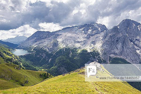 Viel del Pan Refuge with Marmolada in the background  Pordoi Pass  Fassa Valley  Trentino  Dolomites  Italy