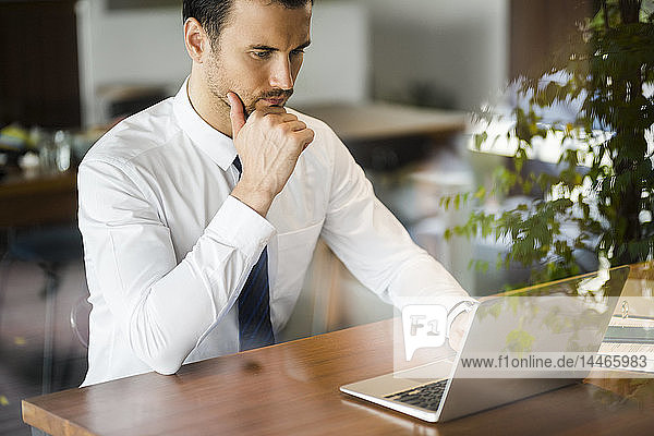 Focused businessman working on laptop in cafe on wooden table