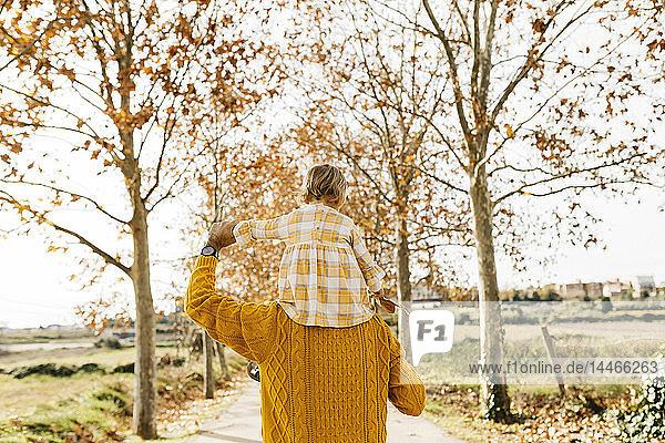 Vater trägt seine kleine Tochter morgens auf den Schultern  im Herbst im Park
