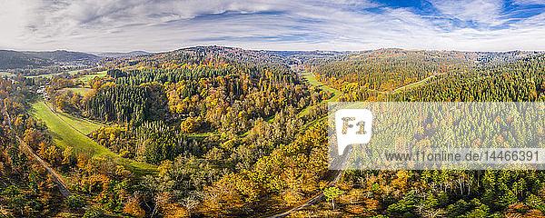Deutschland  Baden-Württemberg  Schwäbisch-Fränkischer Wald  Luftaufnahme des Waldes im Herbst