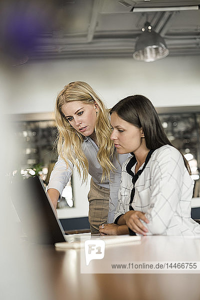 Two female colleagues discussing and working on laptop